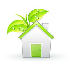 4-Growing-Environment-Friendly-Greens-Closer-to-Home
